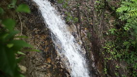 Waterfall in the tropical jungle Stock Image