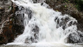 Waterfall in the tropical jungle. Falls off a cliff into the pond stock video