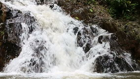 Waterfall in the tropical jungle. Falls off a cliff into the pond stock video footage