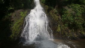 Waterfall in the Tropical Jungle stock video