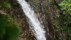 Waterfall in the Tropical Jungle stock footage
