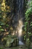 Waterfall in tropical land. Beautiful man made waterfall in the Botanical garden of Taichung, Taiwan Stock Photo