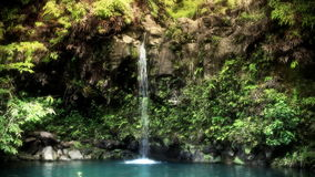Waterfall in Tropical Paradise stock video footage
