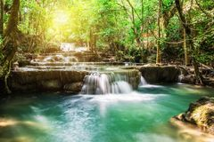 Waterfall tropical rain forest Royalty Free Stock Photo