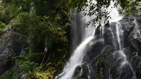 Waterfall in tropical rain forest. Krok E Dok Waterfall in tropical rain forest, Saraburi Thailand. nature background stock video footage