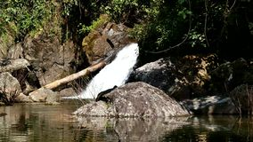 Waterfall in tropical rain forest. Waterfall in tropical rain forest, Nakhon Nayok, Thailand stock video footage