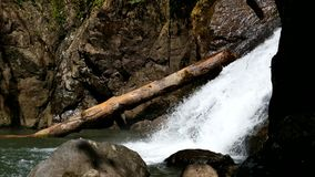 Waterfall in tropical rain forest. stock video footage