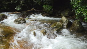 Waterfall in tropical rain forest. Waterfall in tropical rain forest in real time switching slow motion. nature background stock footage