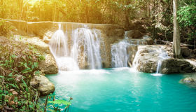 Waterfall tropical rain forest scenic sunlight Royalty Free Stock Image