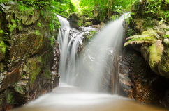 Waterfall in tropical rain forests Royalty Free Stock Photos