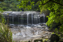 Waterfall in Tropical Rainforest Royalty Free Stock Image