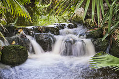 Waterfall in Tropical Stream Royalty Free Stock Photo