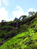 Waterfall in Tropics. A beautiful waterfall from the western ghats of India Royalty Free Stock Images