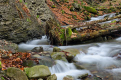 Waterfall with trunk. Waterfall with mossy trunk and rocks Royalty Free Stock Photos
