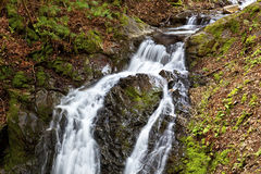 Waterfall in Uvas Canyon 4 Royalty Free Stock Photography
