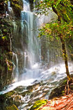 Waterfall in Uvas County Park Royalty Free Stock Photography