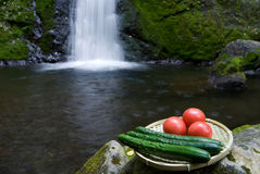 Waterfall and vegetables Royalty Free Stock Photos