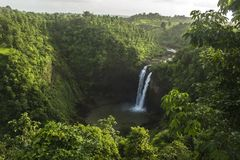 Waterfall, Vegetation, Nature, Nature Reserve stock photos