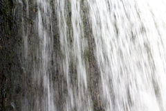 Waterfall and vegetation under water Stock Photography