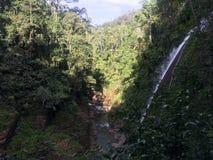 Waterfall Velo de Novia Imágenes de archivo libres de regalías