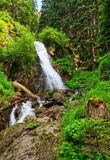 Waterfall in Vermiglio Royalty Free Stock Photos