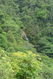 Waterfall in vietnamese forest. Waterfall in forests of North Vietnam royalty free stock images