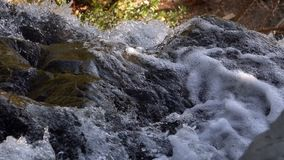 Waterfall view in wild nature stock video