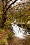 Waterfall in Wales. A long exposure of a small waterfall in the Elan Valley, Wales.  Taken with a polarizer to emphasise the colours Royalty Free Stock Image