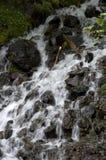 Waterfall water falls Royalty Free Stock Photo