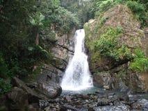 Waterfall.  Stock Photos