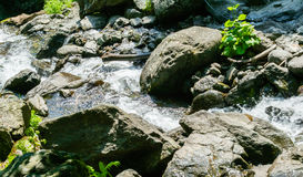 Waterfall water nature. Falling river flowing outdoors royalty free stock photos