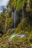 Waterfall, Water, Nature, Vegetation stock images