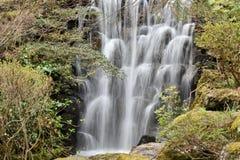 Waterfall, Water, Nature, Vegetation Stock Photography