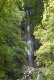Waterfall, Water, Nature, Vegetation royalty free stock photography