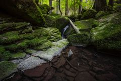Waterfall water stream in black forest stock photography