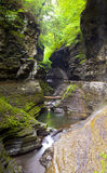 Waterfall Watkins Glen State Park Royalty Free Stock Photography