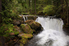 Waterfall in Whatcom Falls Park Royalty Free Stock Images