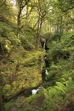 Waterfall in Wicklow Mountains National Park. Stock Photos