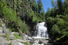 Waterfall At wild coast Teletskoe lake,  Altai State Natural Bio Royalty Free Stock Photo