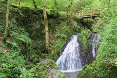 Waterfall the wild swoosh in wild Endertal valley in eifel regio. Waterfall die wilde rausch engl. the wild swoosh in wild Endertal valley in eifel region Royalty Free Stock Images