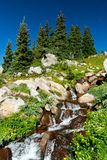 Waterfall and Wildflowers Landscape Royalty Free Stock Images