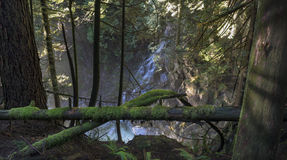 Waterfall Window. An unnamed cascade pours through the forest and into a creek near Mission, BC, Canada Stock Images
