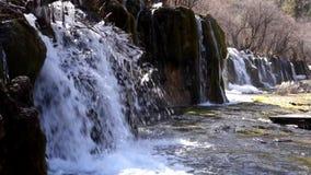 Waterfall  in winter stock video
