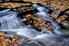 Waterfall With Leaves Stock Photography