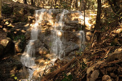 Waterfall in the wood Stock Photo