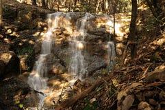 Waterfall in the wood. Waterfall in Liguria mountain wood Stock Photo