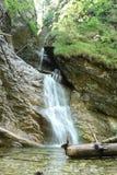 Waterfall in wood. Stock Photo