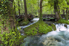 Waterfall with wooden bridge Royalty Free Stock Photography
