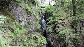 Waterfall in woodland by bridge stock video