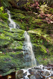 Waterfall in the Woods Royalty Free Stock Image